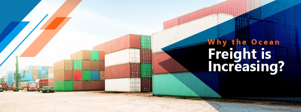 Why the Ocean Freight is Increasing?